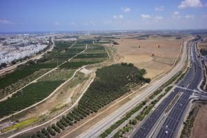 המשולש החקלאי אשדוד